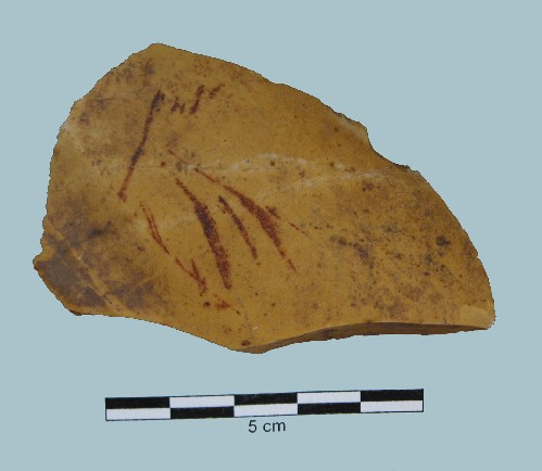 MN-FL-01+ Cedar Valley Chert