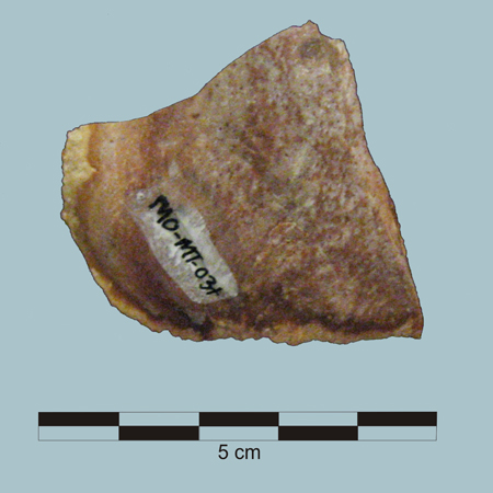 MO-MT-03+ Burlington Chert