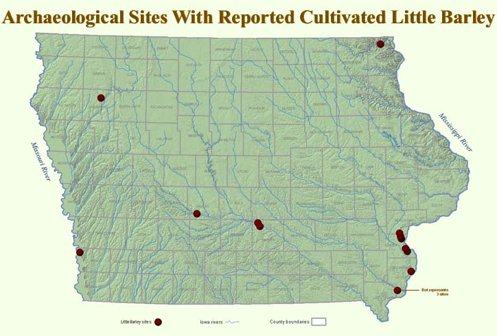 Map of Iowa with dark red dots that indicate prehistoric sites known to have cultivated little barley