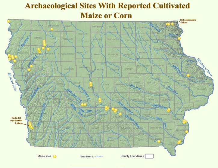 Map of Iowa with light yellow dots that indicate prehistoric sites known to have cultivated maize or corn