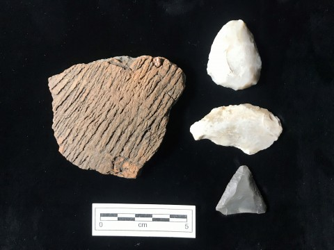 Artifacts recovered at 13DK143 in 2019