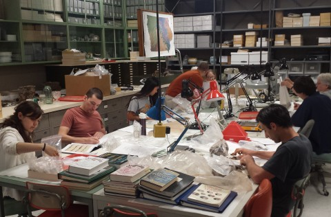 Volunteers cataloging artifacts during the OSA laboratory opportunity.